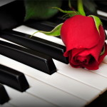 rose-piano-wallpaper-wallpaper-4